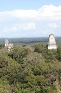 Maya temples and glyphs desk calendar donation $20